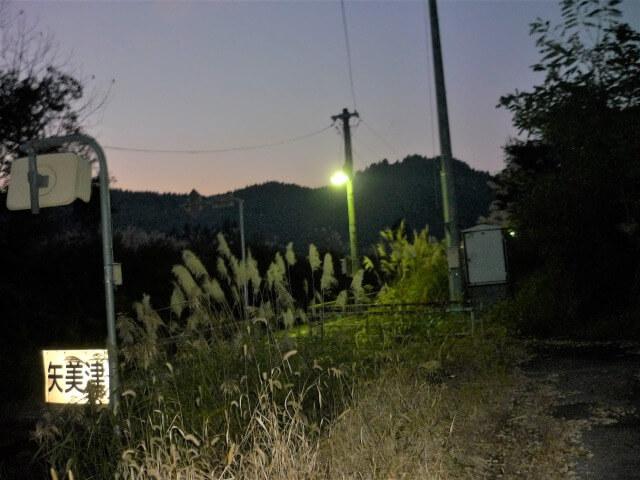 矢美津駅 夜