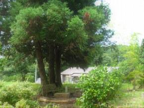 上黒川農村公園