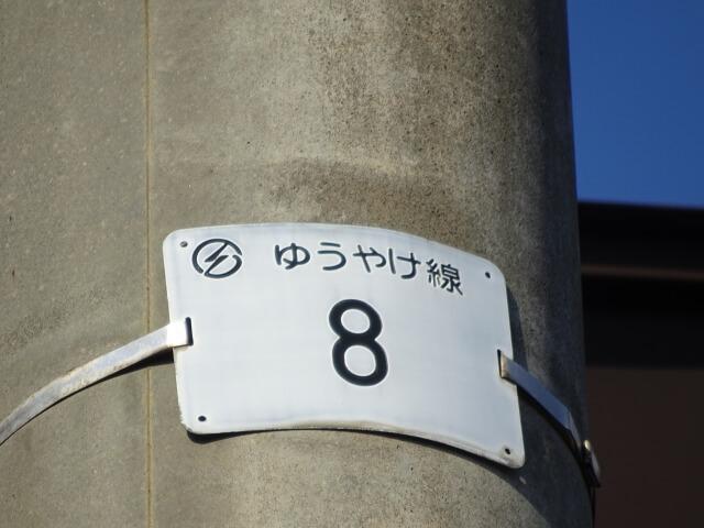 ゆうやけ線 ナンバー8