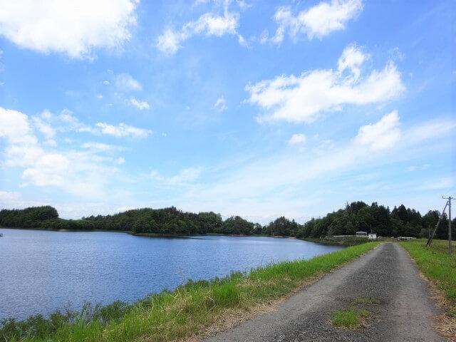 横手嬲られカカシ 沼2