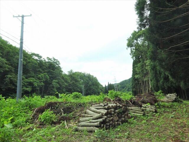 廃村 袖川 集落跡地