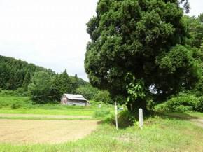 廃村 鳥海町栩山 サムネ