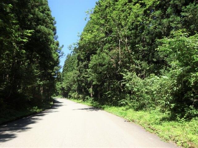 廃村 矢島町軽井沢 道中