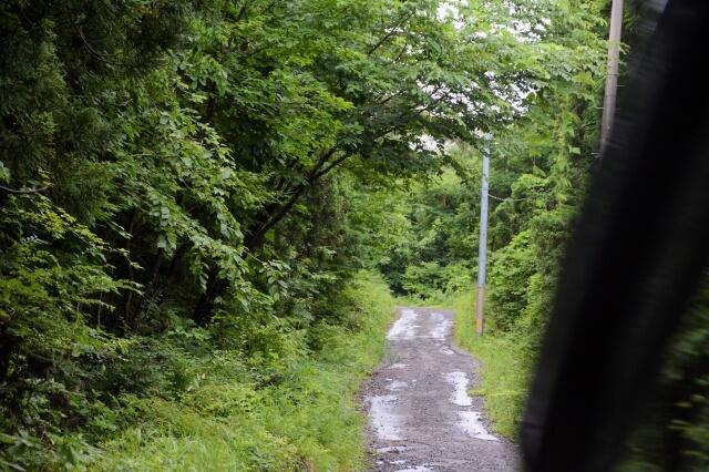 観音森 道中