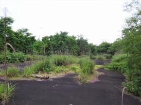 廃村 前野