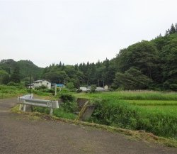 保滝沢集落 ~小盆地の桃源郷、作物とともに~