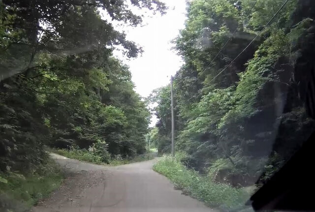 東由利ザッコ又 道中2