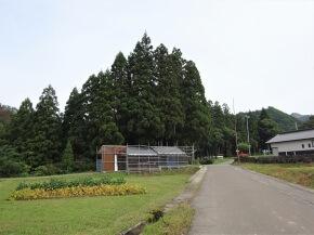 東成瀬村立岩井川小学校入道分校 サムネ