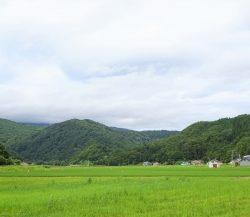 鳥海町百宅 ~ダムに沈みゆくマタギ霊園~