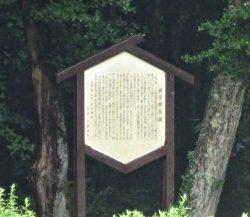 辰子誕生の地 サムネ